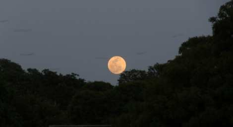Moon rise in India rs